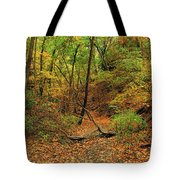 Owl Canyon In Autumn 2 Tote Bag