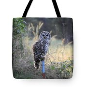 Owl Cherish This Moment Forever Tote Bag