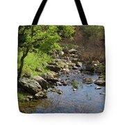 Owl Creek Tote Bag