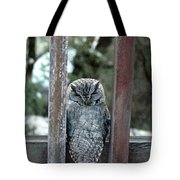 Owl On Deck Tote Bag