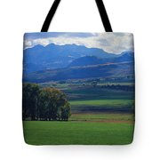 Owl Pass Uncompahgre National Forest Co Tote Bag