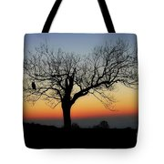 Owl Sunset Tote Bag
