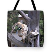 Owl Takeoff Tote Bag