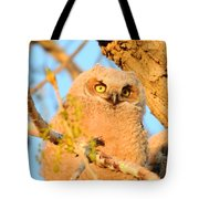 Owlet In A Spring Sunrise Tote Bag