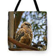 Owlet Lookout Tote Bag