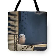 Owls And Trestles Tote Bag