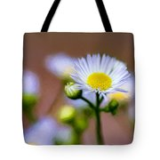 Oxeye Daisy - Paint Tote Bag