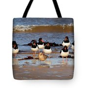 Oystercatchers Tote Bag