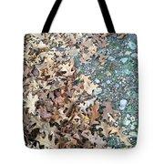 Ozark Autumn Tote Bag