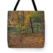Ozark Forest In Fall 1 Tote Bag