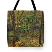 Ozark Forest In Fall 2 Tote Bag