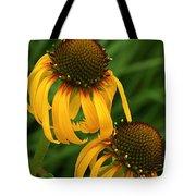 Ozark Yellow Coneflowers Tote Bag