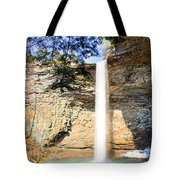 Ozone Falls Focus Tote Bag
