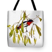 pa TonyOliver AustralianBirds 13 MistletoeBird Tony Oliver Tote Bag