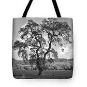 Pacheco Pass Tote Bag