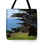 Pacific Beauty Tote Bag