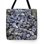 Pacific Blue Mussels Tote Bag