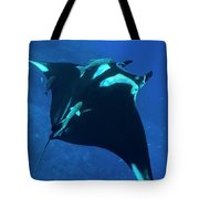 Pacific Giant Tote Bag