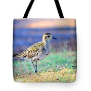 Pacific Golden Plover - 2 Tote Bag