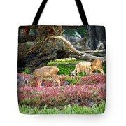 Pacific Grove Deer Feeding Tote Bag