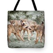 Pack Dispute Tote Bag