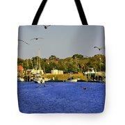 Paddle Boarders Vs Birds Tote Bag