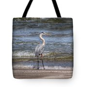 Padre Island National Seashore  Tote Bag