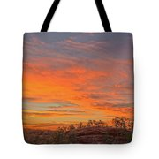 Painful Truth Is Better Than A Pleasant Lie.  Tote Bag