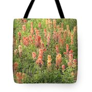 Paintbrush Beauties Tote Bag