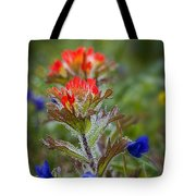 Paintbrush In The Mist Tote Bag