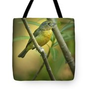 Painted Bunting Female Tote Bag