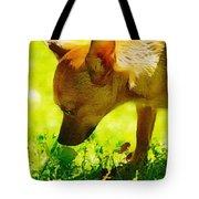Painted Chihuahua  Tote Bag