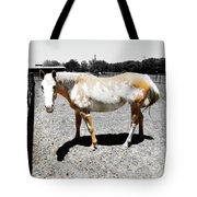 Painted Horse II Tote Bag