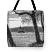 Painted Lady Light Tote Bag