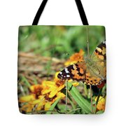Painted Lady On Zinnia Tote Bag