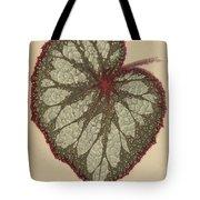 Painted Leaf Begonia Tote Bag