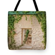 Painted Past Tote Bag