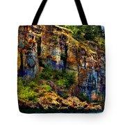 Painted Rock - Flathead Lake Tote Bag