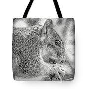 Painted Squirrel Tote Bag
