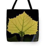 Painted Translucence Tote Bag
