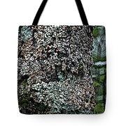 Painted Treebark Woodcut Tote Bag