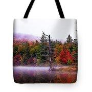 Painted Trees Tote Bag