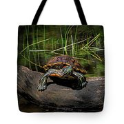 Painted Turtle Sunning Itself On A Log Tote Bag