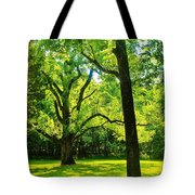 Painting-like Photo Of A Rural Lawn Tote Bag