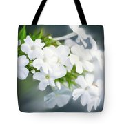 Painting Of White Phlox Tote Bag