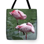 Pair In Pink Tote Bag