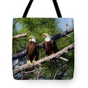 Pair Of American Bald Eagle Tote Bag