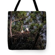 Pair Of Bald Eagles In Nest Tote Bag