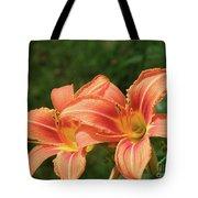 Pair Of Blooming Orange Lilies In A Garden Tote Bag