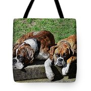 Pair Of Boxers Tote Bag